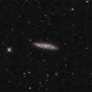Messier 108,                                Régis Le Bihan