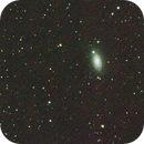 M63 Sunflower Galaxy first attempt,                                Tony Brown