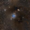 The Dark Claw in Chamaeleon - CED 111,                                Stefan Nebl
