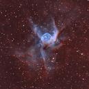 NGC 2359, HOO,                                Stephen Garretson