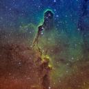 Elephant's Trunk Nebula IC 1396,                                Bogdan Borz