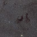 E Nebula,                                Manel Martín Folch