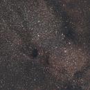 Small Sagittarius Star Cloud,                                Pat Darmody