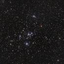 M47 - Open Cluster in Puppis,                                Michael Feigenbaum