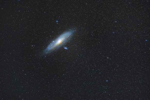 Andromeda Widefield,                                Nico Augustin