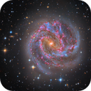 Messier 83,                                Connor Matherne
