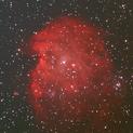 NGC 2175 - Monkey Head Nebula (13 Jan 2021),                                Bernhard Suntinger
