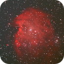 NGC 2175 - Monkey Head Nebula (13 Jan 2021),                                Bernhard Suntinger