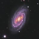 M 109 (NGC 3992) in Ursa Major,                                Ara