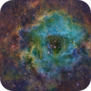 Rosette in SHO with LFHH Contrast Enhancement,                                David McClain