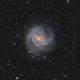 M83 südliche Feuerradgalaxie,                                Alexander Voigt
