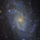 M33: Triangulum Galaxy,                                Toshiya Arai