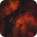 IC 1318 Nebulosa Mariposa,                                Pedro Asunción