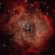 Rosette Nebula,                                penaflor