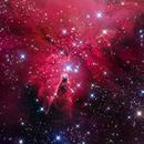 Cone Nebula - Sharpless 273,                                Dean Salman