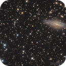 NGC7331 Deer Lick Group and Stephan's Quintet in LRGB,                                Kayron Mercieca