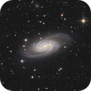 NGC2903,                                Alexander Voigt