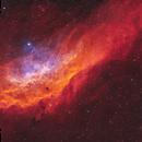 California Nebula NGC 1499,                                John Travis