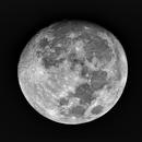 H-alpha Moon,                                Shannon Calvert