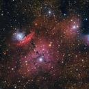 NGC 6559,                                Bob Stewart
