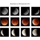 Blood Moon Show,                                Piotr Dzikowski
