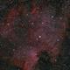 NGC 7000,                                Fabian Rodriguez...