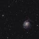M101 HaLRGB,                                Victor Van Puyenb...
