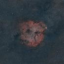 IC1396 - 135mm DSLR,                                Euripides