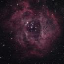 NGC 2244 - Rosett Nebula,                                ThatsNoMoon
