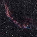 NGC 6992 and NGC6995,                                Dietmar Bode