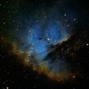 IC11 (PacMan Nebula),                                Ryan Haveson