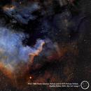 NGC 7000 North America Nebula,                                Gamaholjad