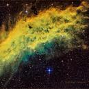 NGC 1499 California Nebula,                                Dale A Chamberlain