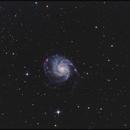 M 101 h-Alpha LRGB,                                Gottfried Meissner