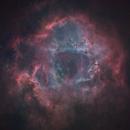NGC2244 - Rosetta Nebula,                                Dagolaf