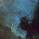 North America Nebula in SHO,                                Wilsmaboy