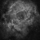 NGC2237 LA ROSETTE  ASI 1600 MMC ED80,                                Laurent