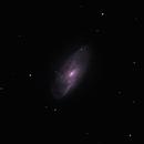 M106 in LRGB,                                Starman609