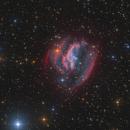 Strottner-Drechsler 137 - aka EGB 9 in Canis Minor - new classified PN,                                Markus Blauensteiner