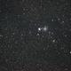 Christmas Tree Cluster NGC2264,                                astropical