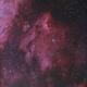 The Pelican Nebula,                                mihai