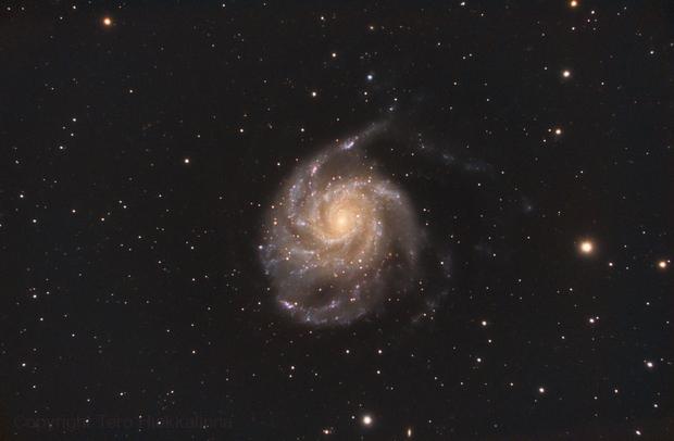The Pinwheel Galaxy - Messier 101,                                Tertsi