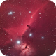 NGC 2024 and IC 434, The Flame and The Horsehead,                                Chad Andrist