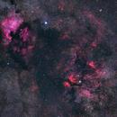 Cosmic clouds around Deneb and Sadr (Wide Field - Single),                                Panagiotis Andreou