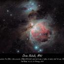 Orion Nebula,                                Paul Brand