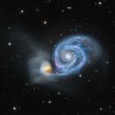 The Great Cosmic Snail (The Whirlpool Galaxy M51),                                Will Czaja