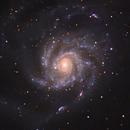 Pinwheel, M101 vs ASI224MC,                                ChrisPeace