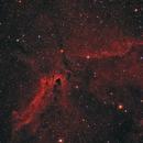 Cometary globules CG30, CG31 and CG38,                                Steve de Lisle