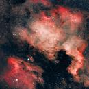 NGC7000 - North America Nebula - Cygnus,                                Dominique.Cecotti