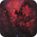 NGC 7000 & IC 5070 (Ha + RGB),                                Scott Davis